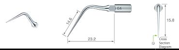 Endodontics/E4 -varios