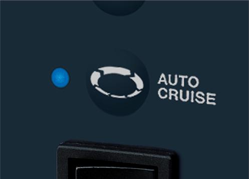 Auto Cruise Function